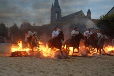 Cheval Spectacle traversant un mur de flammes